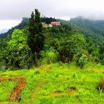 nimbong-valley