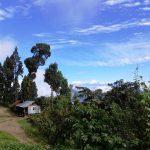 Lolegaon-view
