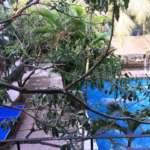 Luxury Floating Resort Kolkata