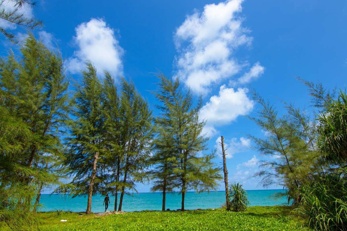 Andaman Tour Package | Book Andaman Holiday | Nomadic Weekends