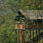 Chongtong-Bamboo-Resort-Tent
