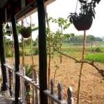 Asan-Nagar-Garden-Area