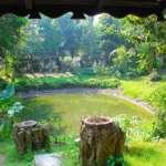 Bantala-Farm-House-Back-Side