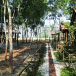 Gramer-Baari-Sundarban-Backside