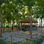 Gramer-Baari-Sundarban-Grden-Area