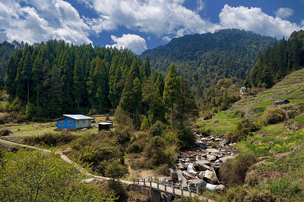 Sabargram-phalut