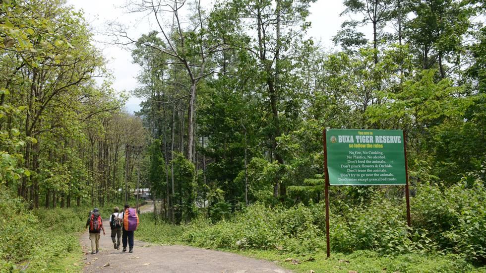 Buxa-Tiger-Reserve-Forest