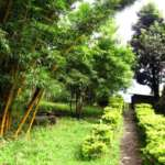 Dhardo-Retreat-Kalimpong-Hotels-and-Resort-Garden-View