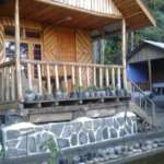 Sangsey Wooden Cottage near kalimpong