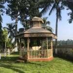 Open field of Tea Resort in Junglee Mohal