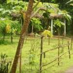 Farm land at Maharaja Uddan Bati Salboni