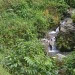 Bon Pahari- Waterfalls