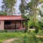 Villa in Bolpur- Side of the room